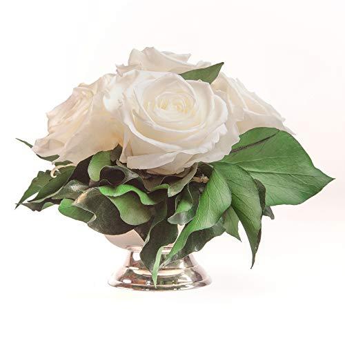ROSEMARIE SCHULZ Heidelberg Rosenbox Blumenbox Infinity Rosen in silberfarbener Schale 6 ewige Rose konserviert Blumenarrangement langhaltend (Weiss, 6 Rosen)