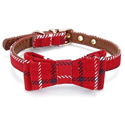 StrawberryEC Puppy Collar