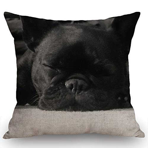 Swono French Bulldog Cotton Linen Throw Pillow Case Home Decorative Cushion Cover for Sofa Couch Bedding 18x18 Inches
