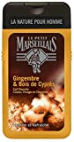 Le Petit Marseillais Gel Douche Homme, Gingembre et Bois de Cyprès, 250ml