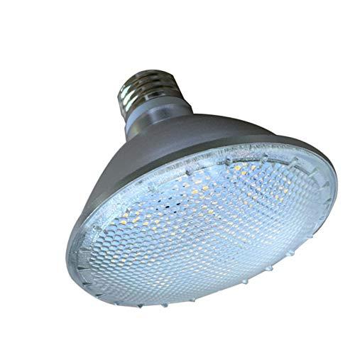 JCMY Bombillas GE Par De Regulación LEDPAR30 E27 12W PI65 Impermeable iluminación LED (Color : 220V-240V, Size : Cold White 6000)