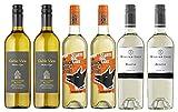 Southern Hemisphere Sauvignon Blanc Wine Lovers Selection (6 x