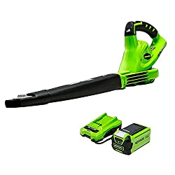 Greenworks electric leaf blower