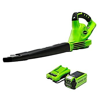 Greenworks 40V  150 MPH  Cordless Leaf Blower 2.0Ah Battery and Charger Included 24252