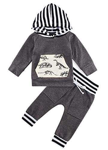 Cute Baby Grey Dinosaur Stripe Patchwork Hoodie Set 0-6 Months Kids Boys Casual Party Festivsl Pullover Manga Larga con Capucha Tops Sweatsuit Pantalones Largos Outfit Clothing Suit Grey