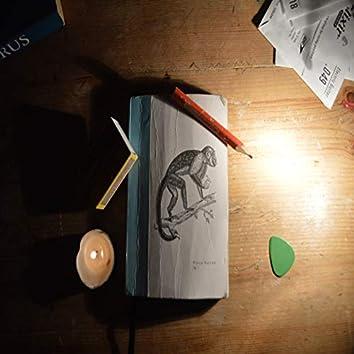 Nice's Notebook