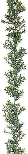 6' Boxwood Artificial Import It is very popular Garland -2 Green case 12 Tone of