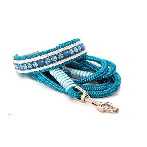 Set: Halsband + Leine, Set für Hunde, Tauleine und Hundehalsband