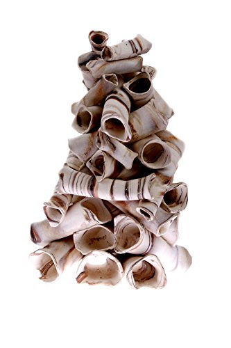 Aquanetta Pile de Tubes pour habitants d'aquarium 17 x 17 x 20 cm
