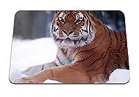 26cmx21cm マウスパッド (タイガープレデター雪が降る大きな猫) パターンカスタムの マウスパッド