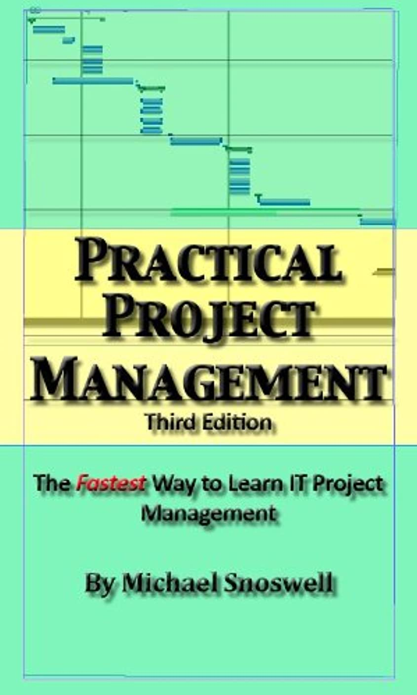 Practical Project Management: Simple Tips You Wish You Knew About Project Management (English Edition)