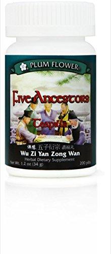 Plum Flower - Five Ancestors Teapills -(Wu Zi Yan Zong Wan)