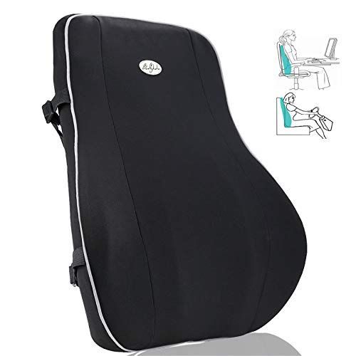 Back Cushion,Memory Foam Lumbar Support Pillow,Breathable 3D Mesh Cover and Adjustable Strap,Orthopedic Backrest and Ergonomic Design for Back Pain Relief,Back Support for Chair and Car Seat