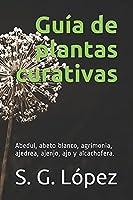Guía de Plantas Curativas: abedul, abeto blanco, agrimonia, ajedrea, ajenjo, ajo y alcachofera