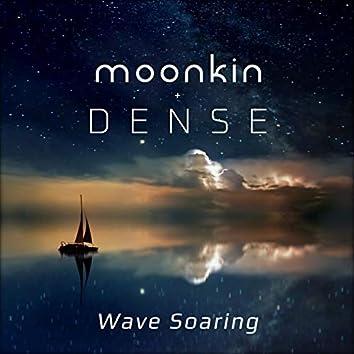 Wave Soaring