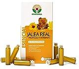 Ervanaria jalea real con propóleo y vitamina c, 30 viales, alta concentración, reduce el cansancio y la fatiga, refuerza el sistema inmunológico, potencia tu mente, mejora tu memoria, aporta energía
