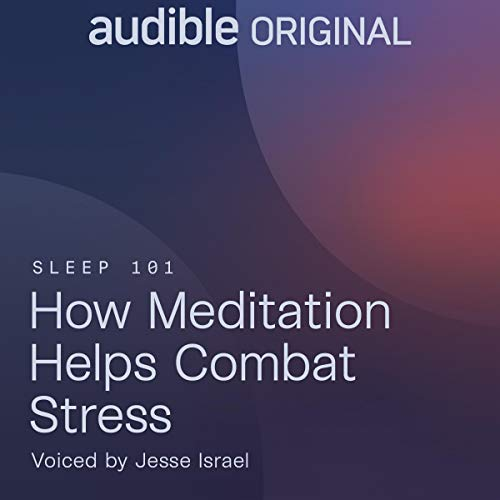 How Meditation Helps Combat Stress Audiobook By The Big Quiet cover art