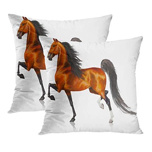 Y·JIANG - Funda de cojín con diseño de caballos americanos corriendo, de terciopelo suave, cuadrada, funda de cojín para sofá, silla, dormitorio, 50,8 x 50,8 cm, juego de 2