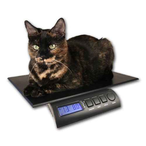 "ZIEIS | 15 Lb Capacity | Digital Pet and Animal Scale | Z15PDURA1216 | 12"" X 16"" BigTop Dura Platform 