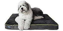 Best Orthopedic Dog Beds 1