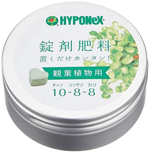 ハイポネックスジャパン ハイポネックス 錠剤肥料 観葉植物用 70g [8029]