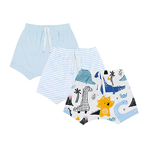 mini eggs Baby Boy Shorts 3 Pack Cotton Pull On Pants for Toddler Kids (Pterodactyl/Blue/Stripes, 18 Months)