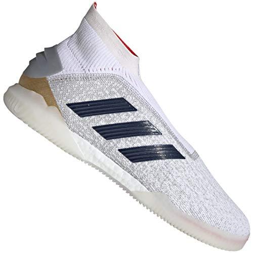 adidas Predator 19+ TR Zapatos de Fútbol Blanco, 40 Hombre