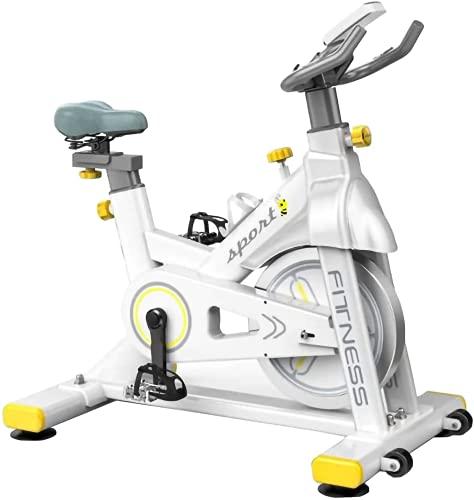 LAZY SPORTS Bicicleta Spinning Estática de Fitness. Resistencia Magneto resistencia. Asiento y Manillar Ajustable. Carga máximo 160Kg Silenciosa (blanco)