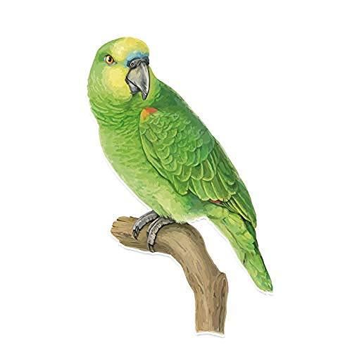 Auto-Aufkleber, personalisierbar, grüner Papagei, PVC, 9,3 x 14,9 cm, 2 Stück