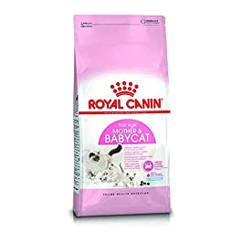 ROYAL CANIN Mother & Babycat Dry Cat Food 400g, 2kg, 4kg