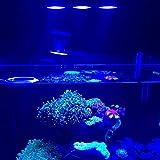 Iluminación para agua salada con luz LED para acuario 30W para interiores Iluminación LED de agua salada con control táctil para el acuario de arrecife de coral (Color: negro)