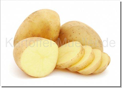 Kartoffel Müller Marabel 20kg