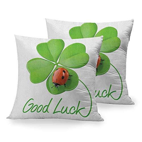 Funda de almohada cuadrada de doble cara para ir a la fiesta, símbolos de la suerte, trébol de cuatro hojas con mariquita, encanto irlandés, buena suerte, verde, rojo, negro, silla para el hogar, deco