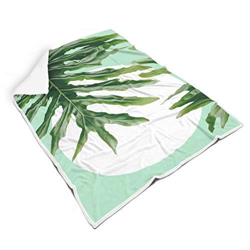 kikomia Tropisch Grüne Palmblätter Sonne Kunstwerk Druck Gemütlich Sherpa Decke Psychedelisch Picknick Werfen Fernsehen Erwachsene&Kinder White 130x150cm