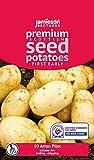 Jamieson Brothers® Seed Potatoes Red Duke of York - 10 Tuber Pack