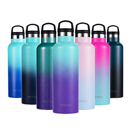 Insulated Water Bottle Stainless Steel Vacuum Insulated Double-Wall Thermos,20OZ Water Bottle with Handle Lid Tropical Seas