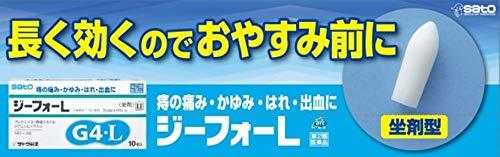 【指定第2類医薬品】ジーフォーL10個