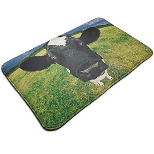 Prairie Cow Print Door Mat Bath Mat Entrance Mat Floor Mat Rug Indoor/Outdoor/Front Door/Bathroom Mats Rubber Non Slip 50cm*80cm