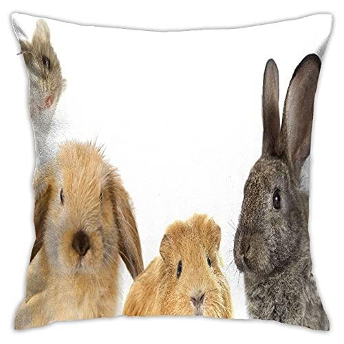 Fundas de almohada decorativas Fundas de almohada cuadradas Fundas de cojín con cremallera, Divertido de roedores Conejo y conejillo de Indias Hámster, protectores de almohada estándar Fundas de almoh