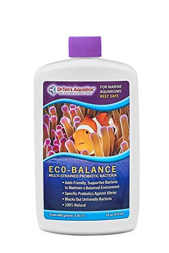 DrTim's Aquatics Reef Eco-Balance Probiotic Bacteria – For Reef, Nano, Seahorse Aquaria, Fish Tanks, Aquariums – Blocks Unfriendly Bacteria, Promotes Optimal Water Quality – 100% Natural – 16 Oz.