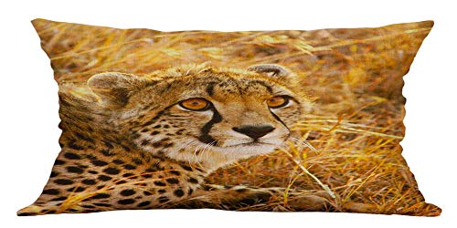 HFBBY Wildlife and Cute Pets Close-up Animal Pattern Pillow Home Decorative Pillow case (29, 12×30 inch)