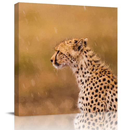 cheetah prints pictures - 6
