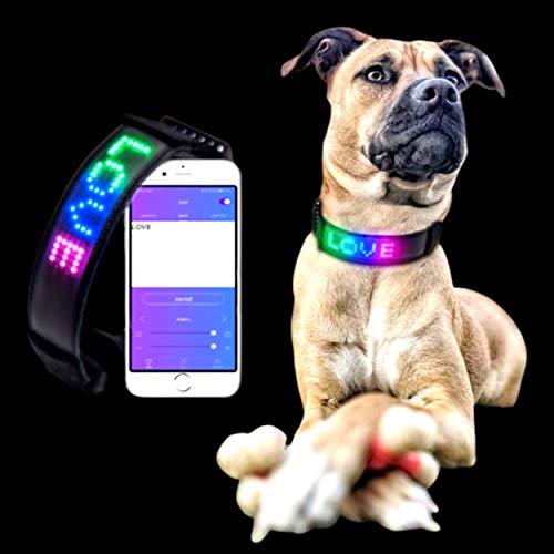 Collar de perro LED IDLED™ Collar de perro LED recargable con luz de mensaje personal ajustable 5 modos Verde Azul Azul Amarillo Parpadeante 5 modos Verde Azul Amarillo Seguridad Visión nocturna Luz e