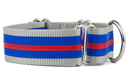 "If It Barks - 1.5"" Martingale Collar for Dogs - Stripe Design - Adjustable - Strong and Comfy Nylon - Ideal for Training - Made in USA - Medium, Electric Blue/Red"