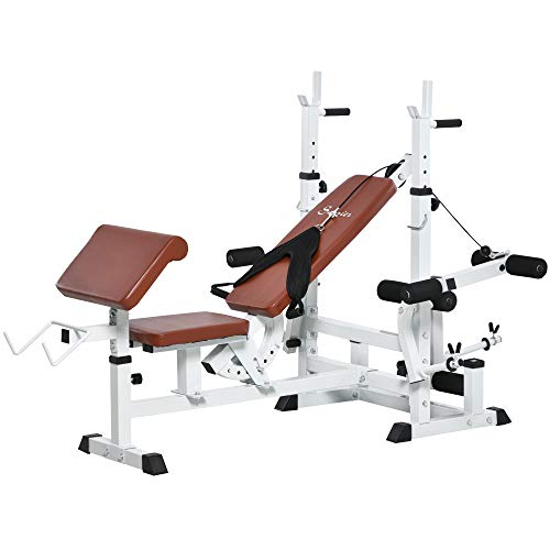 Soozier Multi-Exercise Full-Body Weight Rack with Bench Press, Leg Extension, Chest Fly Resistance Band & Preacher Curl