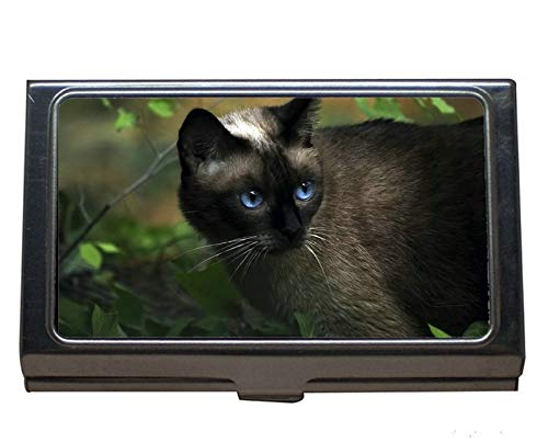 Estuche profesional para tarjetas de visita, tarjetero de acero inoxidable para gato Blue Eyes