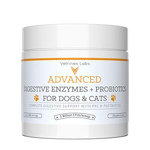 Vetrinex Labs Digestive Enzymes and Probiotics for Dogs and Cats: 120 GMS Probiotic Powder with Digestive Enzymes for Constipation, Diarrhea, and Coprophagia - UTI and Skin Yeast Infection Treatment