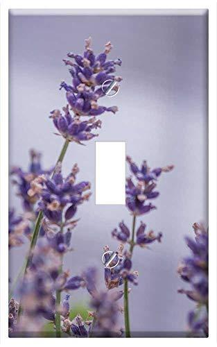 Switch Plate Single Toggle - Flower Balcony Garden Lavender Balcony Plant