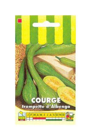 Les Graines Bocquet - Graines De Courge Tromba D'Albenga -...