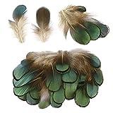 SurePromise 50/100 plumas naturales de faisán para decoración de bricolaje, manualidades, costura, accesorios de disfraz